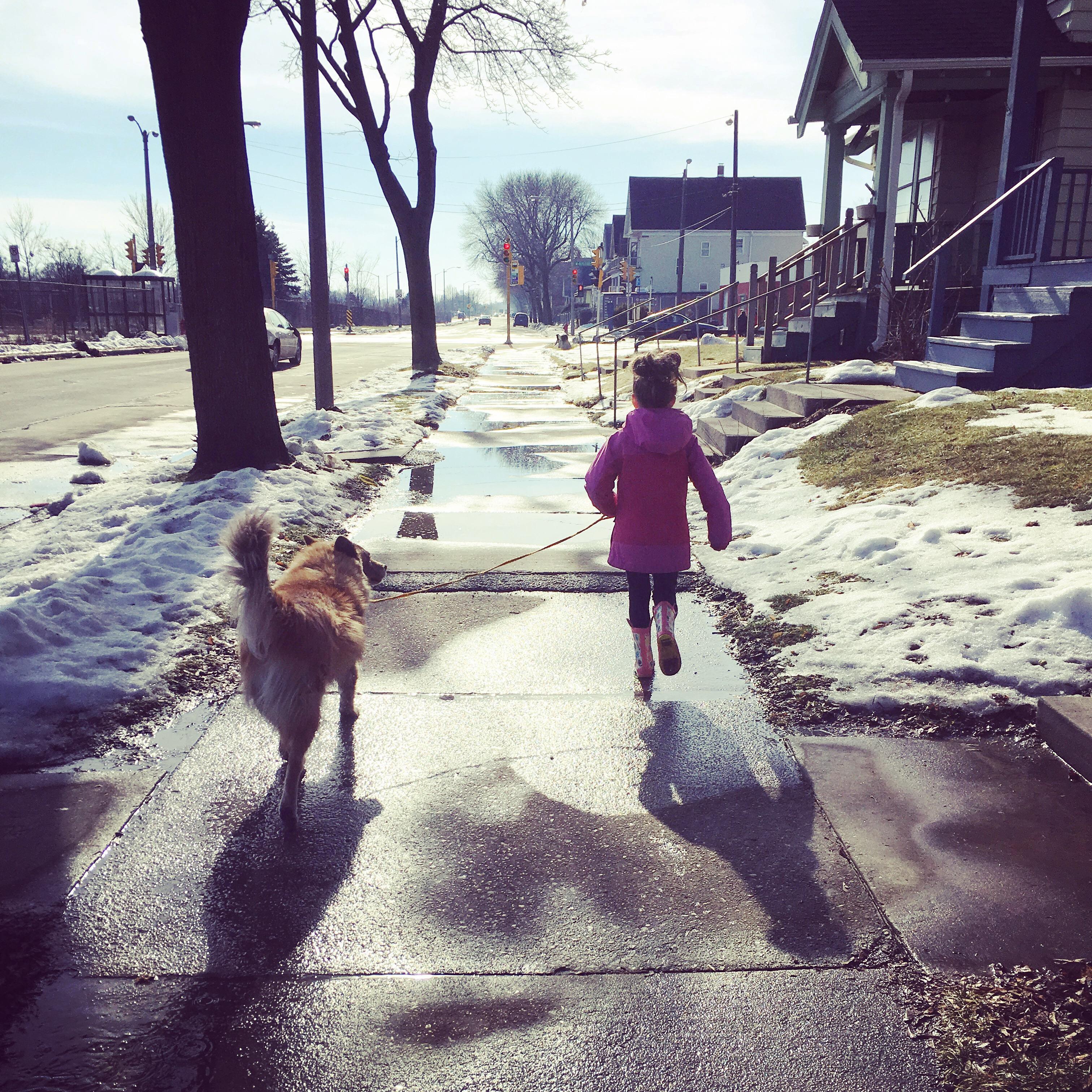 Kid walking dog